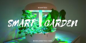 Smart Garden - zu Hause bequem Kräuter anbauen
